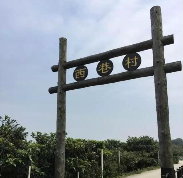 蘇州東山西巷村